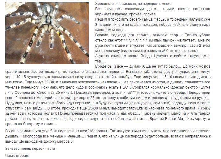 Укус паука птицееда отзыв 3